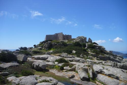 Escursioni Asinara