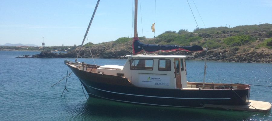 Escursione in barca all'Asinara
