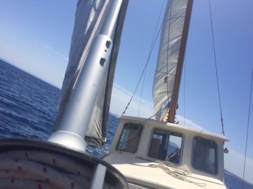 Escursioni in barca all'Asinara con Cassiopea