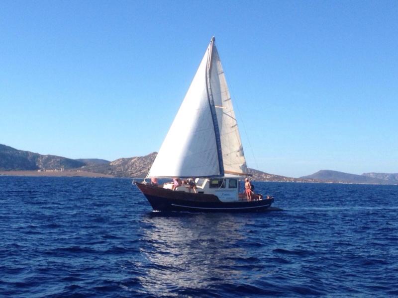 Cassiopea - barca escursion Asinara