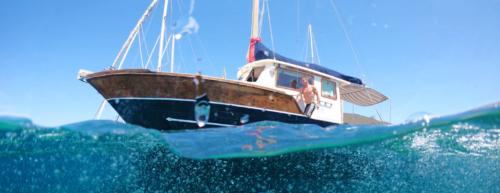 Escursioni in barca Asinara